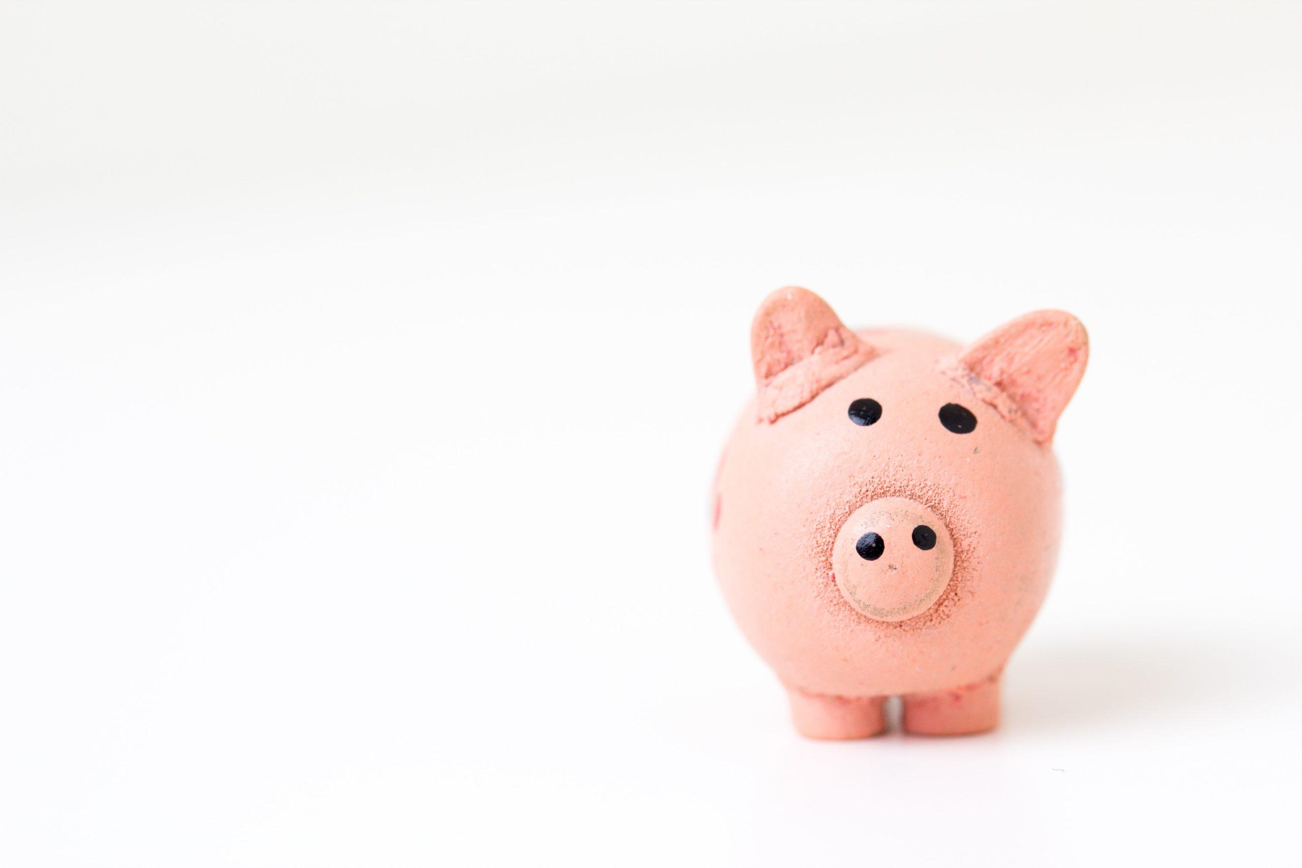 Schwein Preis